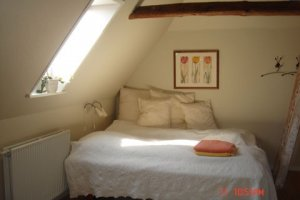 Bed and Breakfast i Ribes centrum